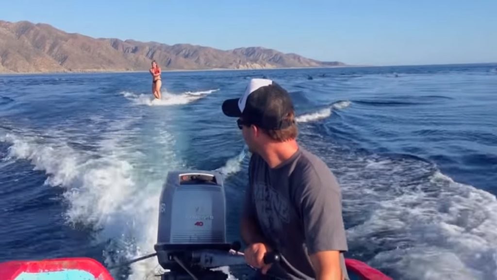 Girl Was Just ,Casually, Waterskiing,Water,ski,skiing,Girl,dolphin,video,sea,