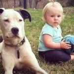 Priceless Memories between a baby and a Dog