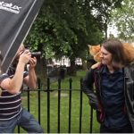 A stray Cat change this musicians life