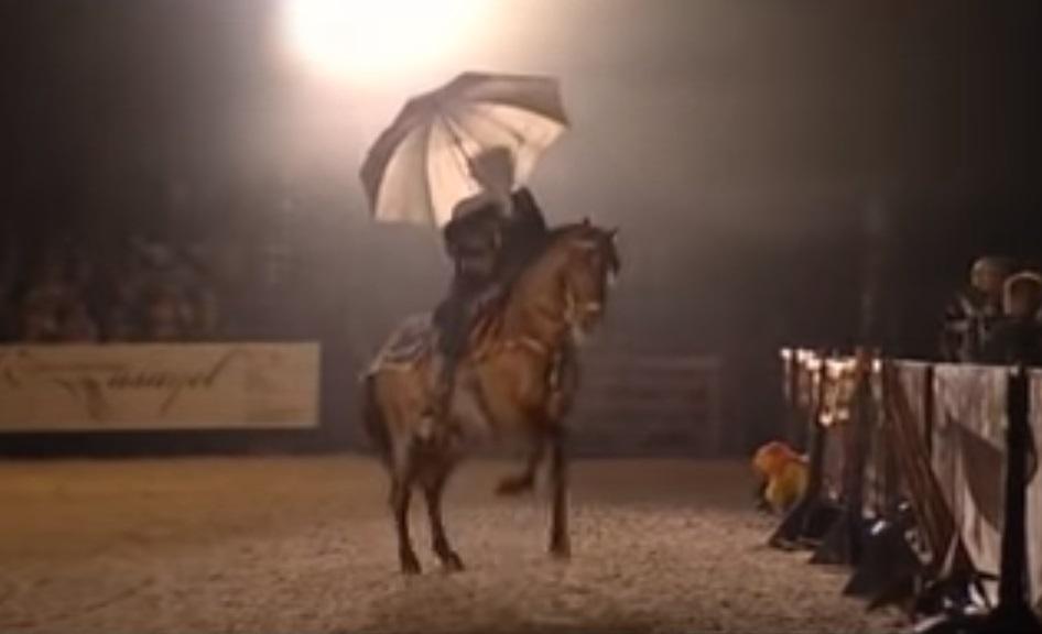 Horse, horse dances, dance, animals, sing, rain, song, amazing animals,