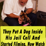 They Put A Dog Inside His Jail Cell