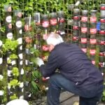 Best uses of Bottles for gardens Decoration
