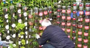 Creative, Tricks, Hacks, Design, Bottle, Plastic, Decoration, Garden,