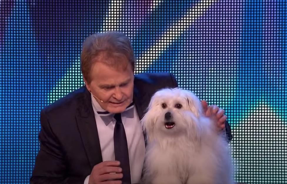 Dogs, BGT, Talent, Hilarious, Talking Animals, Animals,