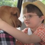 Miraculous Story of Xena the warrior Puppy