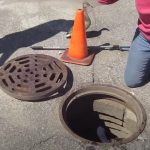 Duckling Rescue From A Manhole