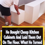 He turned Kitchen Cabinets to a unique Bed
