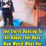 Watch ,Horse, Does,dancing,dance,animals