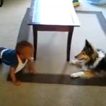 This just may be the cutest Video ever