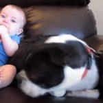 Cute Baby Poops in his Diapers