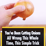 A creative way to cut an Onion