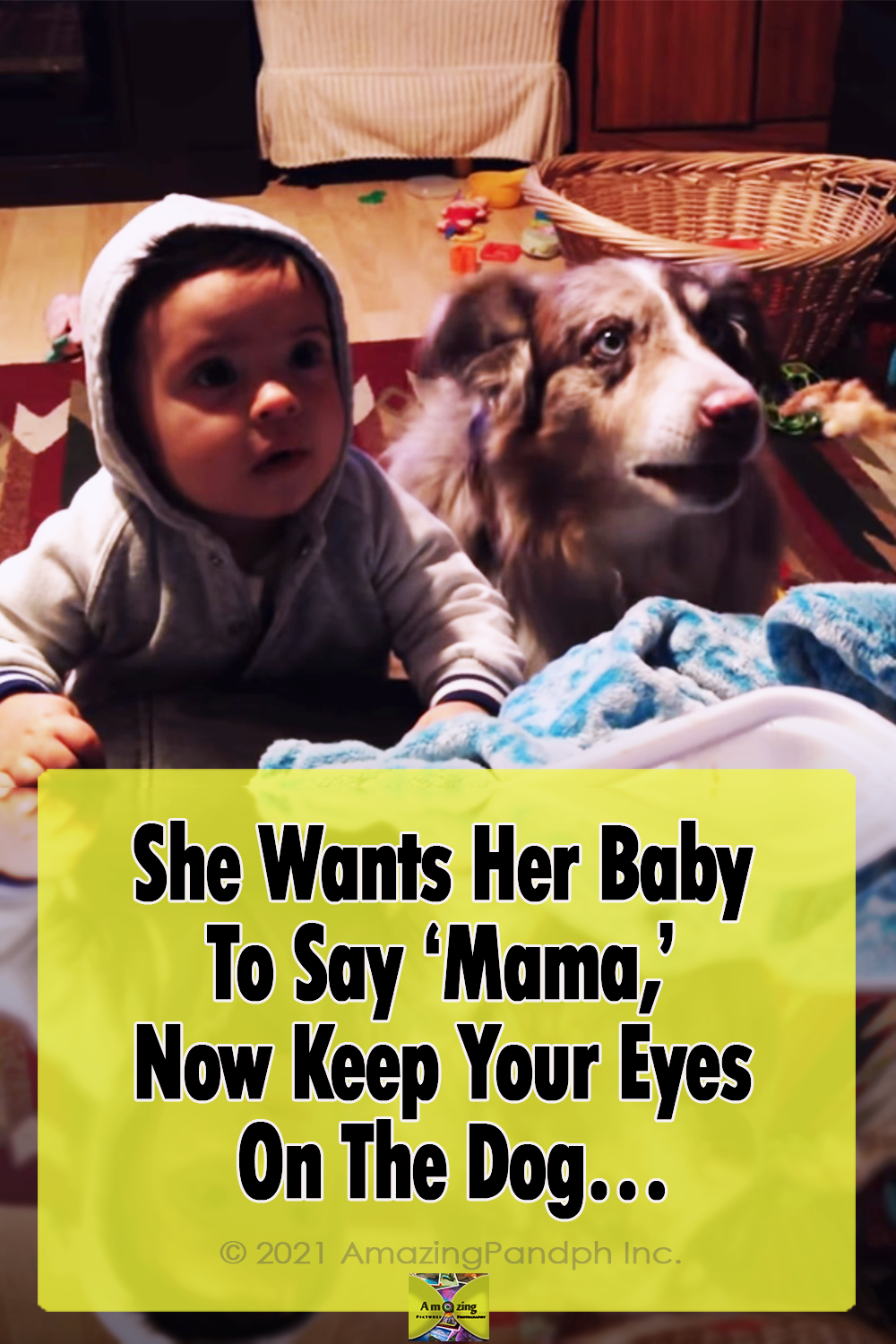 dog, hilarious, mama, food, baby, unbelievable,