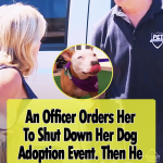 Every Pet Must Be Adopted
