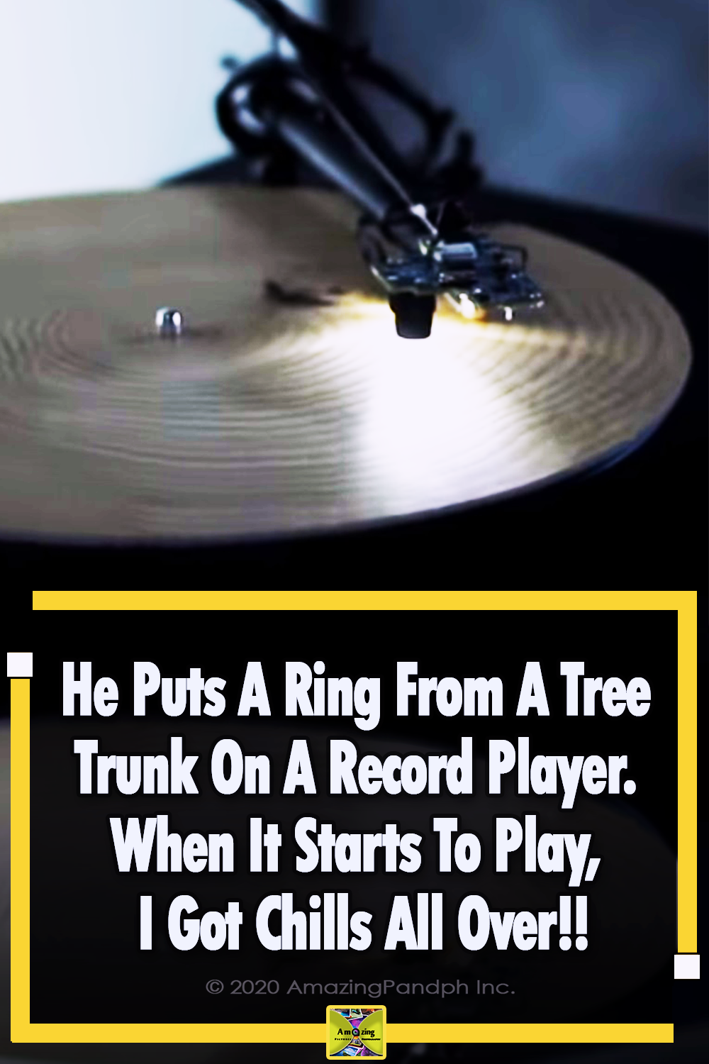 Ring, Tree, Record Player, gorgeous, music, Sound,