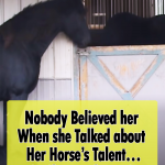 This Horse is very good at opening Doors