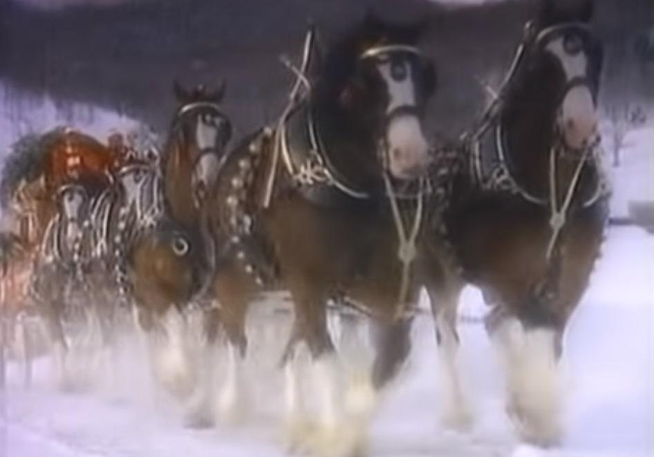Christmas, Horses, Advert, Budweiser, Clydesdales, Memories,