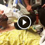 They Brought dog to the Hospital for Her Final Farewell to Dad…Her Reaction Is Bringing Everyone To Tears…