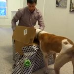 This Dog Wasnt Supposed To Live To See The Gift