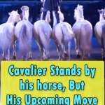Cavalier Stands by his horse