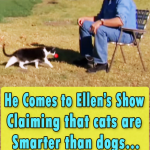 He Comes to Ellens Show Claiming that cats are Smarter than dogs
