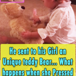 He sent to his Girl an Unique teddy Bear