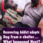Recovering Addict adopts Dog from a shelter