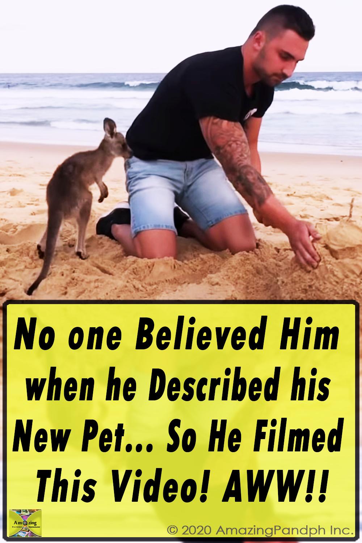 Funny, Video, Skit, Prank, Pranks, Joke, Jack, odoherty, real, australian, australia, youtuber, facebook, tradie, bloke, teens,kangaroo,new pet,adopt kangaroo,weird adoption