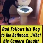 Dad Follows his Dog to the Bathroom