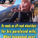 He made an offroad wheelchair for his paralyzed wife