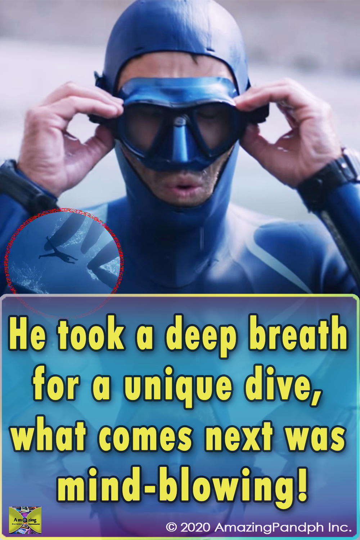 freediving, Nice, Dive, Ocean, Whales, Mexico, Japan, Mauritius, Travel, Short Film, Deep Breath, Adventure, Diver, Diving Suit,